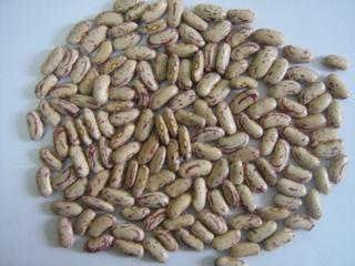 Yian Origin Light Speckled Kidney Beans (655)