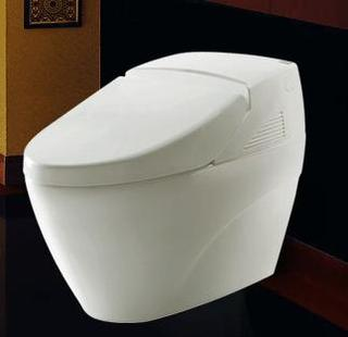 Intelligent toilet LZ-0701