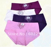 Hot Wholesale!!! Free shipping comfortable and breathable 100% bamboo fiber fashion women's Briefs