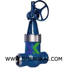 High temperature and Hi-Pressure Globe valve.