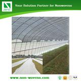 Growing and Plant Cover Nonwoven felt