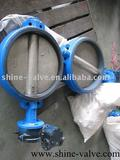 Check Out!!!Butterfly Valve