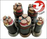 450/750v PVC Insulated Steel Tape Armored Control Cable