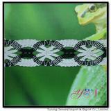 Afia   wide  colorful jacquardcotton lace YN-H0447B