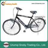 New Utility Bicycle