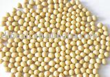 Organic Chinese Yellow  Soybean for sprouting( 2011 crop, Jilin Origin)