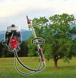 Hot Sell Pole Chain Saw