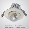 10W 20W 30W gimbal LED spotlight
