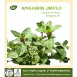 High Quality Oregano Extract (Oregano Oil) Bacteriostasis