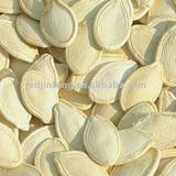 2011 new crop shine skin pumpkin seeds