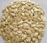 shine skin pumpkin seeds