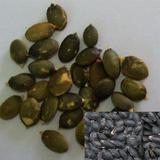 Roasted Black Pumpkin Seeds Kernels