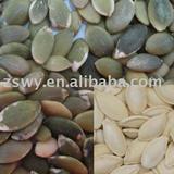 unroasted shiny skin pumpkin kernels