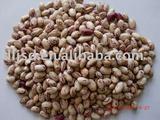 Chinese Light Speckled Kidney Beans