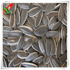 sunflower seed 5009 24/64