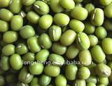 New crop Green Mung Beans (High quality)