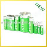 Alkaline Battery AA AAA C D