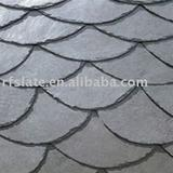 Fishing scale Roofing slate