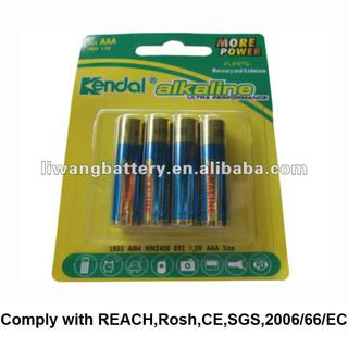 aaa battery with french language jacket