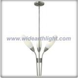 Modern simple chandelier nice pendant lamp (C80325)
