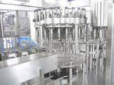 RGF40-40-12 Juice Filling Machine