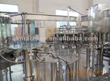 RGF14-12-5 Juice Filling Machine