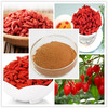wolfberry extract/goji berry powder/goji berry extract