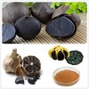 Black Garlic Powder/Glack Garlic Extract