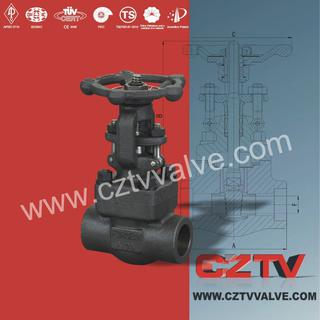 forged steel oil gas valve