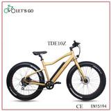 electric bike TDE10Z