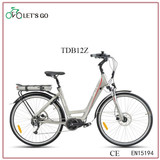 Beach Cruiser E bike TDF09 36v