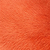 100% polyester burnout bonded TC fabric for sofa