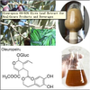 Oleuropein 6%-60% Olive Leaf Extract for Healthcare Products and Beverages