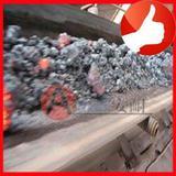 Conveyor belt for heightened temperature