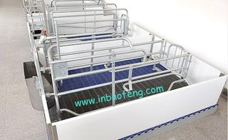 Pig Farrowing Crate E-315