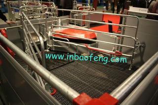 European design galvanized gestation crates E-316
