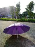 3 Fold Umbrella/Market Umbrella/Promotion Umbrella (ADF-31025ZB)
