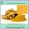High quality ginger extract 10 1