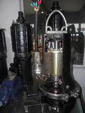 Sewage Pump (WQBS Series)