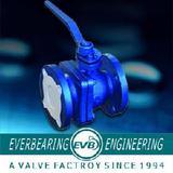BS Ball Valve (CI-004-Y)