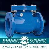 Swing Check Valve (CKV-031-C)