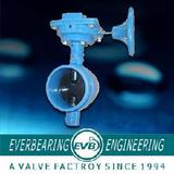 Butterfly Valve (Y-10)