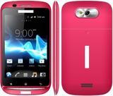 TV Cellular Phone (C737)