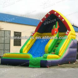 Cute Popular Children Playing Attracting Inflatable Slide