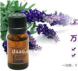 fashionable Lavender oil