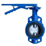 Cast Iron/Ductile Iron Wafer Butterfly Valve
