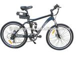 Shine Style Electric bicycle Popular Li-ion battery TDL6170