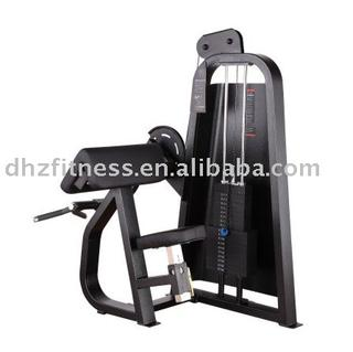 DHZ Camber Curl fitness equipment