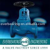 DIN globe valve