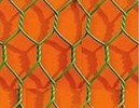 High quality Pvc coated chicken hexagonal Wire Mesh